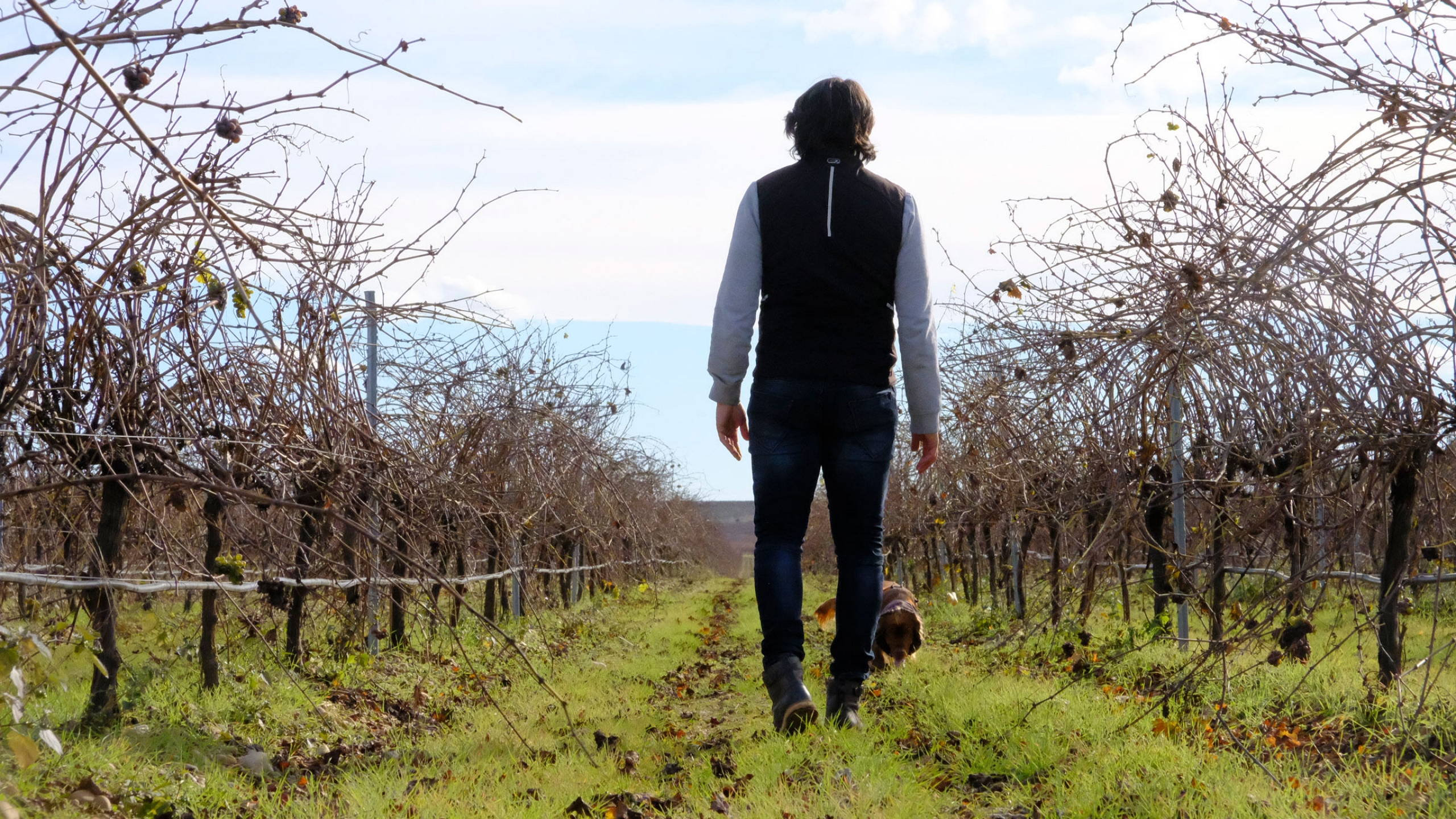 a very personal way of interpreting our terroir
